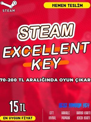 Steam Random (EXCELLENT) Key