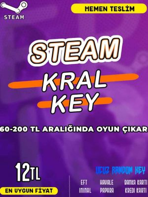 Steam Random (KRAL) Key