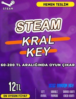 Steam Random (KRAL) Key