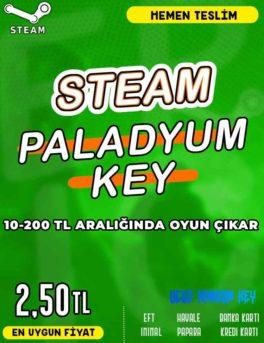 Steam Random (PALADYUM) Key