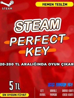 Steam Random (PERFECT) Key