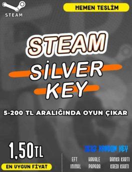 Steam Random (SİLVER) Key
