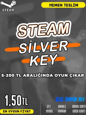 Steam Random (SİLVER) Key
