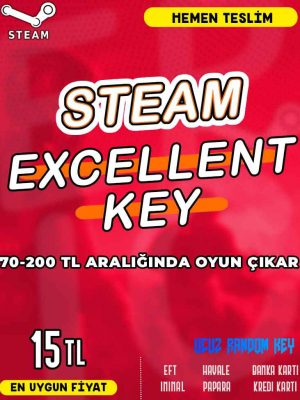 Steam Random (EXCELLENT) Key