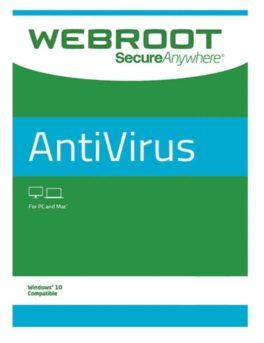 Webroot SecureAnywhere AntiVirus 1 PC 2 YIL
