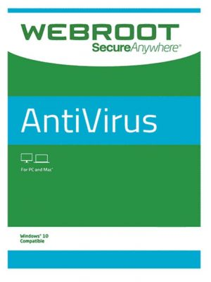 Webroot SecureAnywhere AntiVirus 1 PC 2 YIL