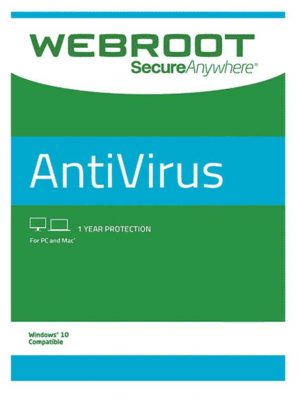 Webroot SecureAnywhere AntiVirus 1 PC 1 YIL